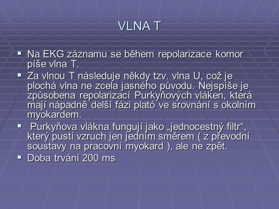 VLNA T  Na EKG záznamu se během repolarizace komor píše vlna T.  Za vlnou T následuje někdy tzv. vlna U, což je plochá vlna ne zcela jasného původu.