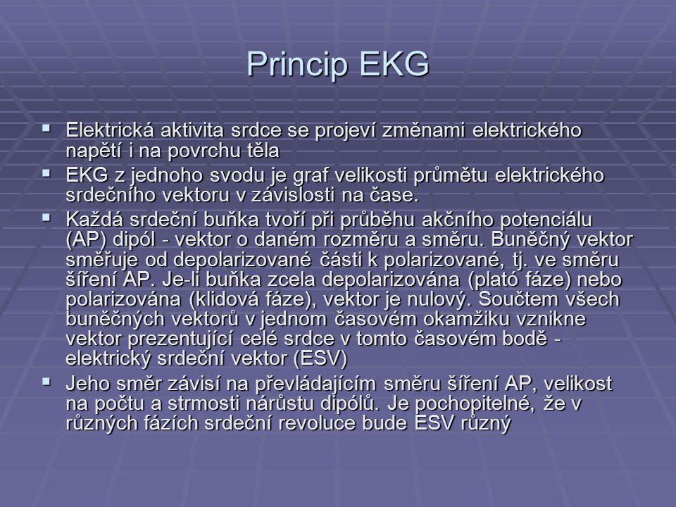Princip EKG  Elektrická aktivita srdce se projeví změnami elektrického napětí i na povrchu těla  EKG z jednoho svodu je graf velikosti průmětu elekt