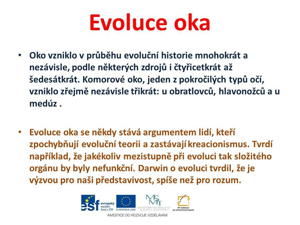 Evoluce oka Oko vzniklo v průběhu evoluční historie mnohokrát a nezávisle, podle některých zdrojů i čtyřicetkrát až šedesátkrát. Komorové oko, jeden z