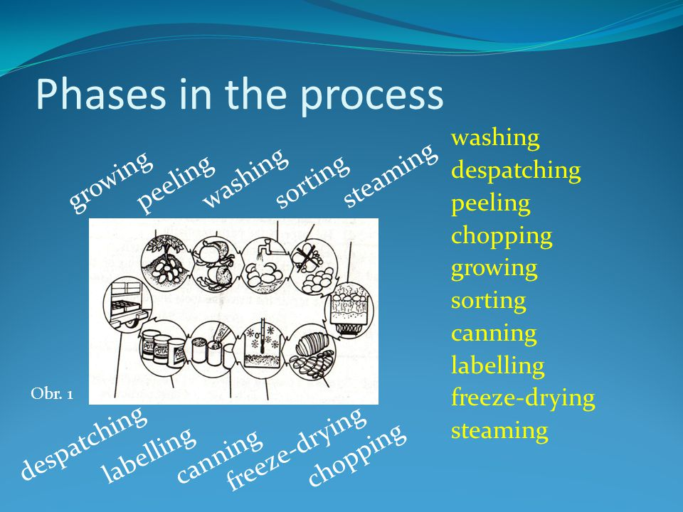 Phases in the process washing despatching peeling chopping growing sorting canning labelling freeze-drying steaming sorting growing peeling washing steaming despatching labelling canning freeze-drying chopping Obr.