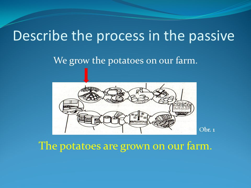 Describe the process in the passive We grow the potatoes on our farm.