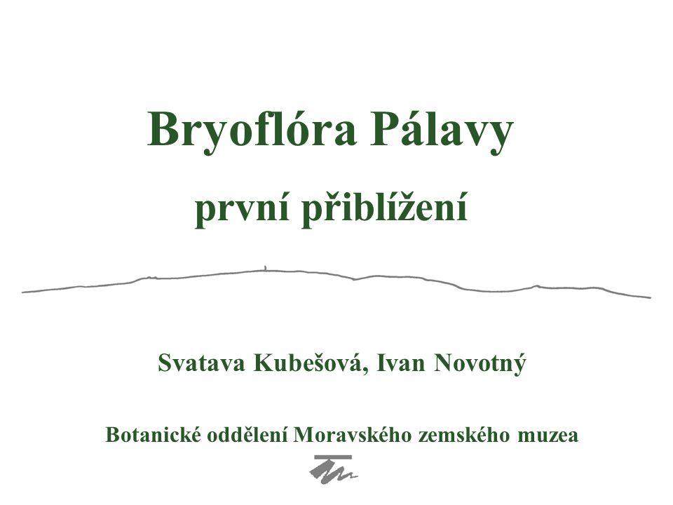 první přiblížení Svatava Kubešová, Ivan Novotný Botanické oddělení Moravského zemského muzea Bryoflóra Pálavy