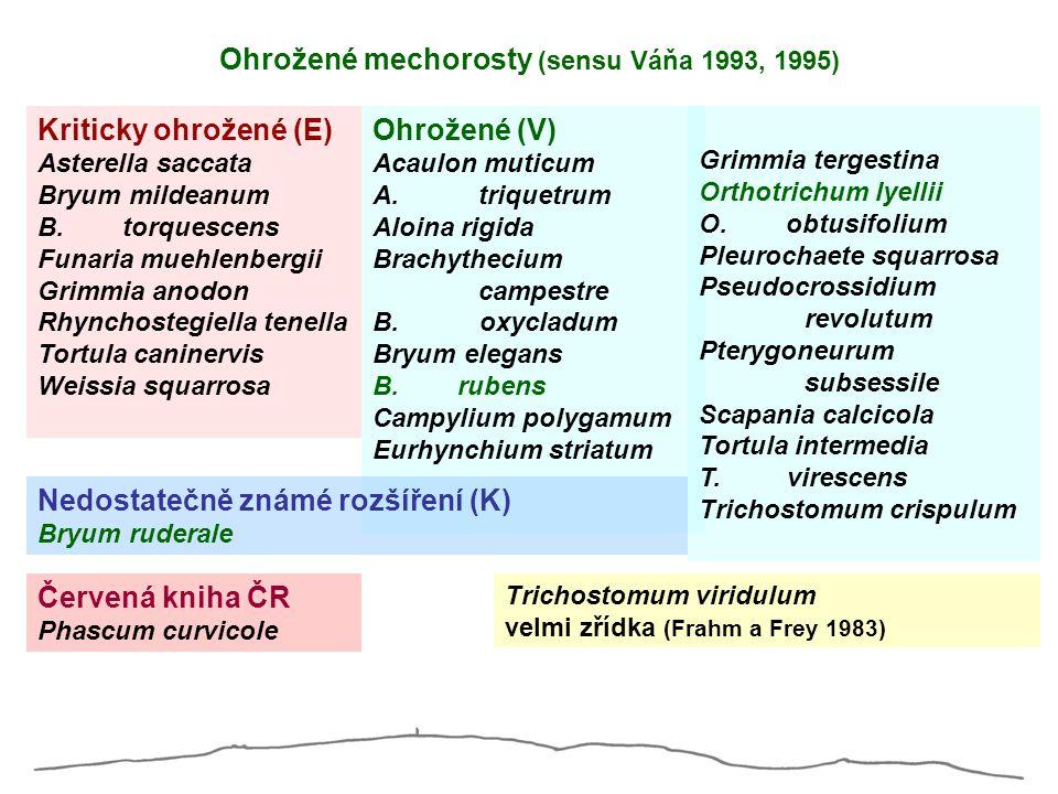 Ohrožené mechorosty (sensu Váňa 1993, 1995) Kriticky ohrožené (E) Asterella saccata Bryum mildeanum B. torquescens Funaria muehlenbergii Grimmia anodo