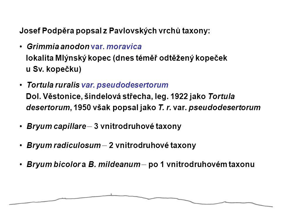 Josef Podpěra popsal z Pavlovských vrchů taxony: Grimmia anodon var. moravica lokalita Mlýnský kopec (dnes téměř odtěžený kopeček u Sv. kopečku) Tortu