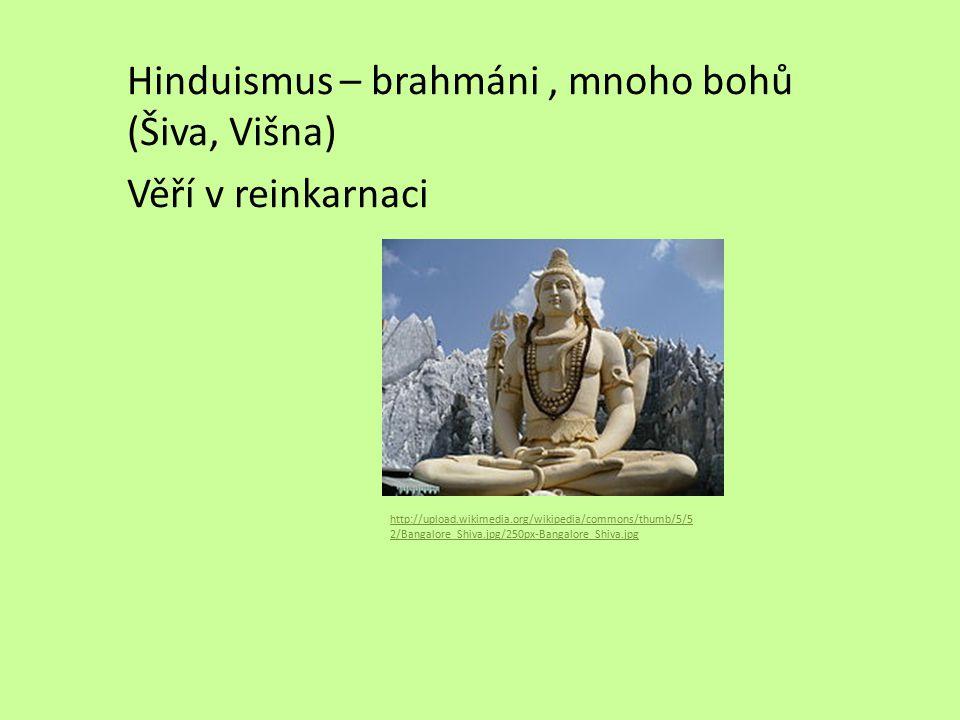 Hinduismus – brahmáni, mnoho bohů (Šiva, Višna) Věří v reinkarnaci http://upload.wikimedia.org/wikipedia/commons/thumb/5/5 2/Bangalore_Shiva.jpg/250px