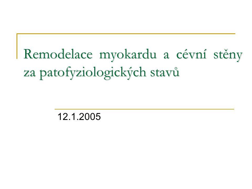 Remodelace myokardu a cévní stěny za patofyziologických stavů 12.1.2005