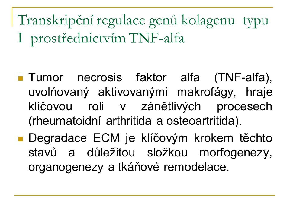 Transkripční regulace genů kolagenu typu I prostřednictvím TNF-alfa Tumor necrosis faktor alfa (TNF-alfa), uvolńovaný aktivovanými makrofágy, hraje kl
