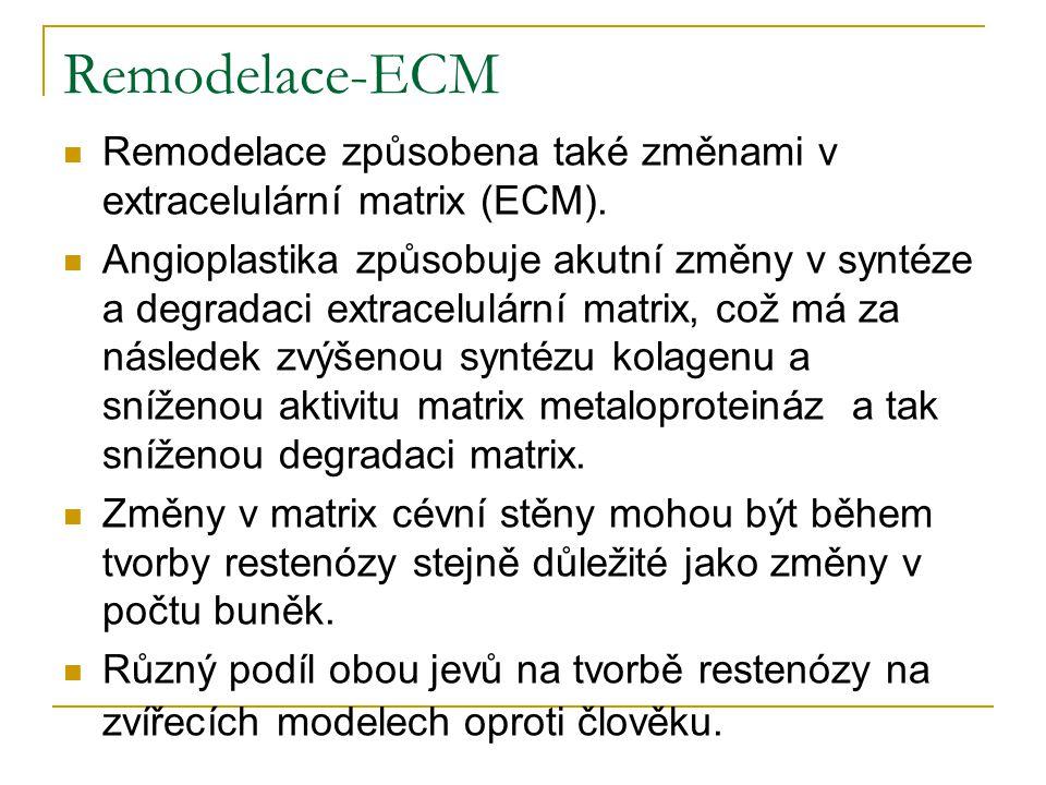 Remodelace-ECM Remodelace způsobena také změnami v extracelulární matrix (ECM). Angioplastika způsobuje akutní změny v syntéze a degradaci extracelulá