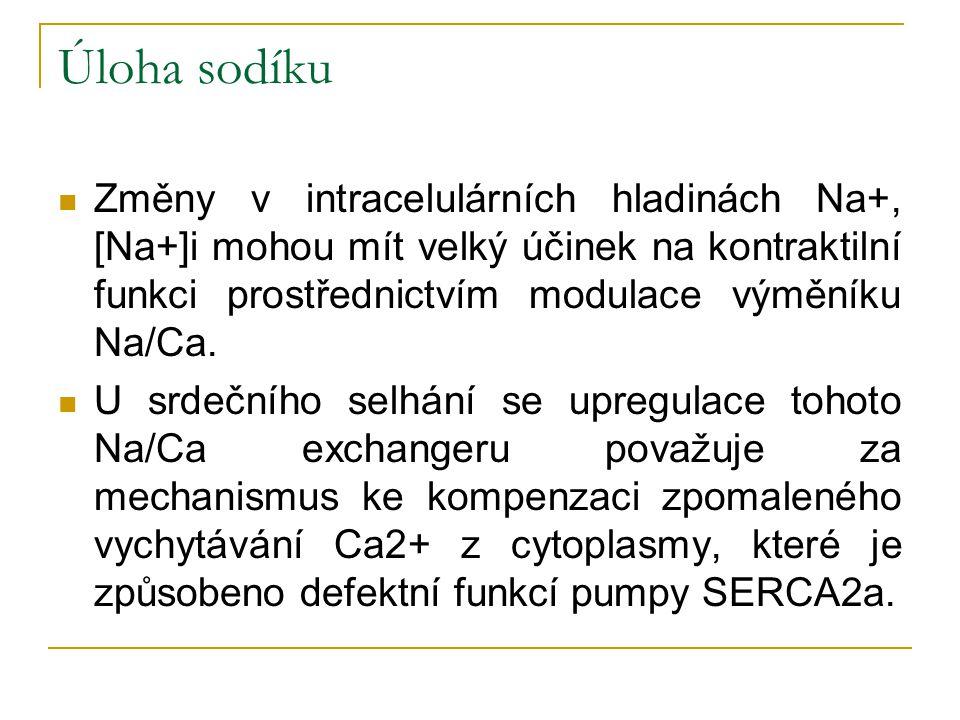 Úloha sodíku Změny v intracelulárních hladinách Na+, [Na+]i mohou mít velký účinek na kontraktilní funkci prostřednictvím modulace výměníku Na/Ca. U s