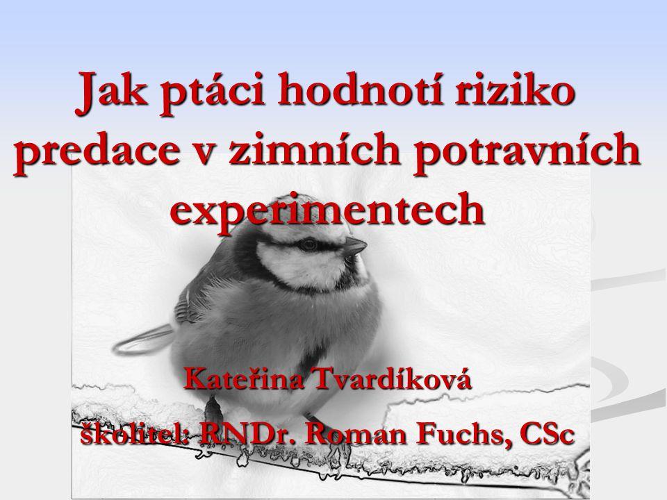 Jak ptáci hodnotí riziko predace v zimních potravních experimentech Kateřina Tvardíková školitel: RNDr. Roman Fuchs, CSc