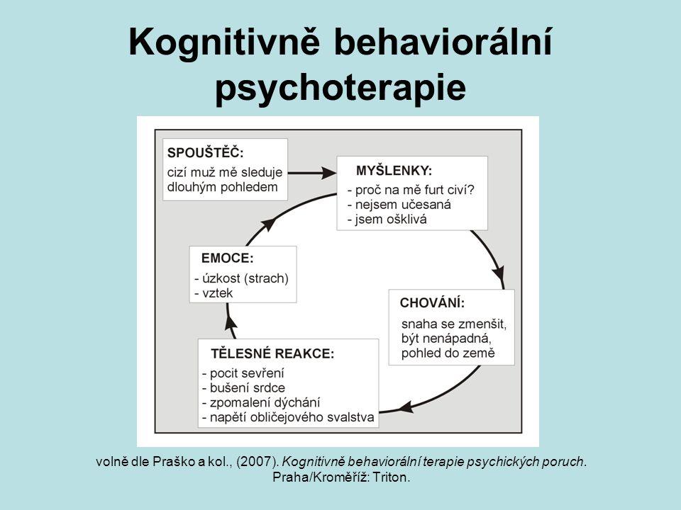 Kognitivně behaviorální psychoterapie volně dle Praško a kol., (2007). Kognitivně behaviorální terapie psychických poruch. Praha/Kroměříž: Triton.