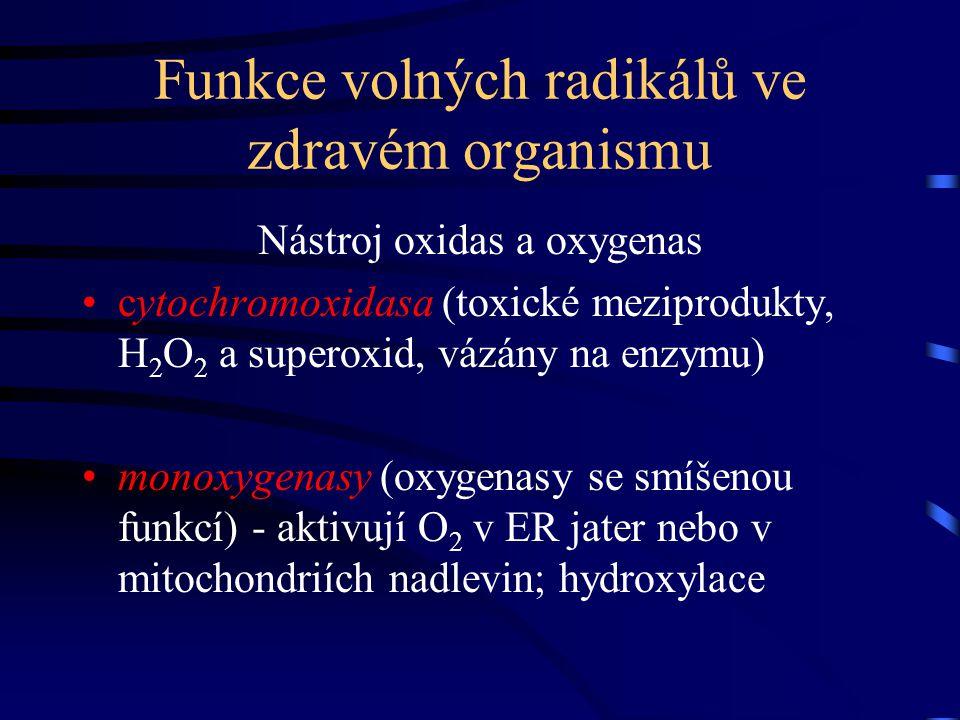 Funkce volných radikálů ve zdravém organismu Nástroj oxidas a oxygenas cytochromoxidasa (toxické meziprodukty, H2O2 H2O2 a superoxid, vázány na enzymu