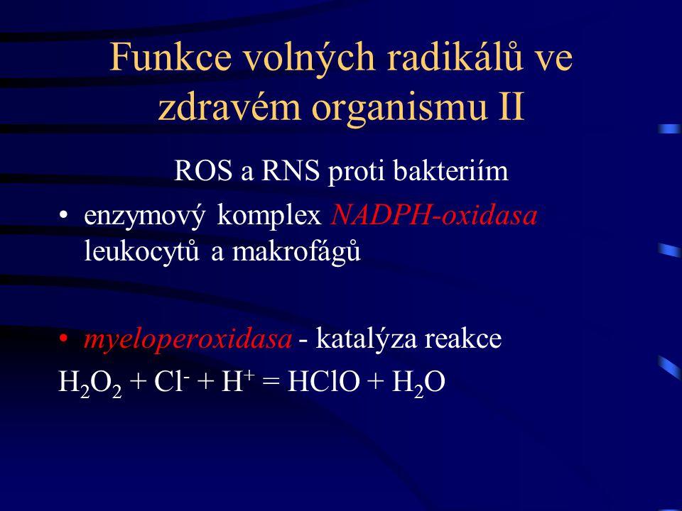 Funkce volných radikálů ve zdravém organismu II ROS a RNS proti bakteriím enzymový komplex NADPH-oxidasa leukocytů a makrofágů myeloperoxidasa - katal