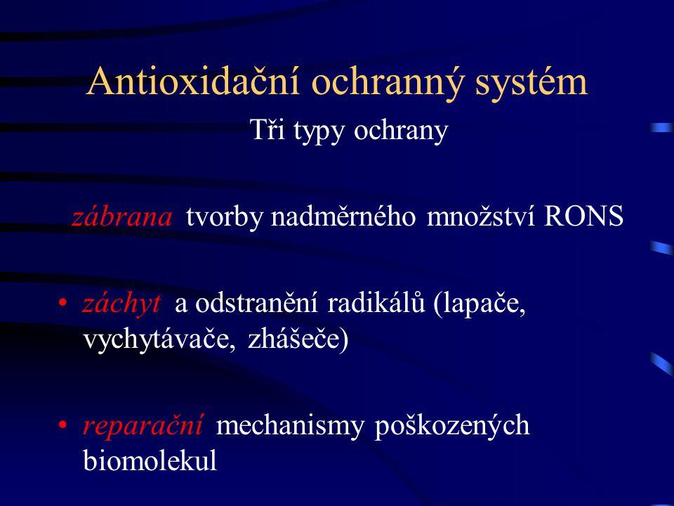Antioxidační ochranný systém Tři typy ochrany zábrana tvorby nadměrného množství RONS záchyt a odstranění radikálů (lapače, vychytávače, zhášeče) repa