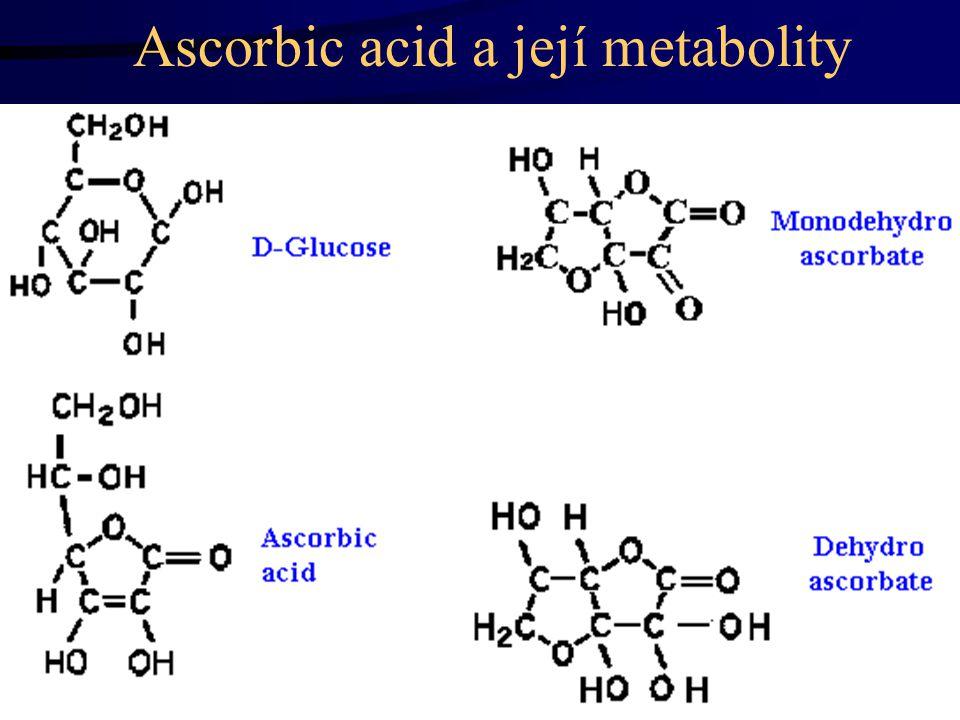 Ascorbic acid a její metabolity