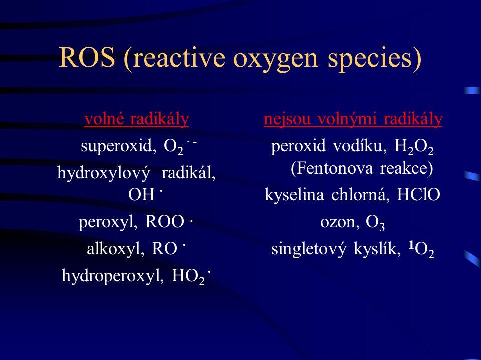 ROS (reactive oxygen species) volné radikály superoxid, O 2 · - hydroxylový radikál, OH · peroxyl, ROO · alkoxyl, RO · hydroperoxyl, HO 2 · nejsou vol