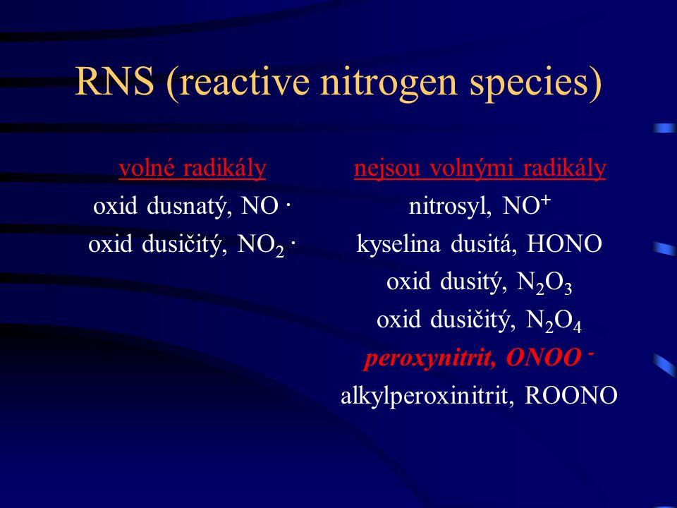 RNS (reactive nitrogen species) volné radikály oxid dusnatý, NO. oxid dusičitý, NO 2. nejsou volnými radikály nitrosyl, NO + kyselina dusitá, HONO oxi