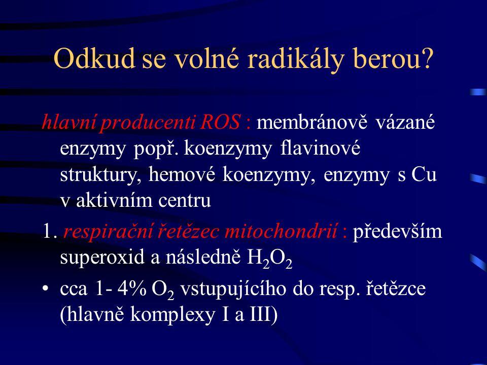Odkud se volné radikály berou? hlavní producenti ROS : membránově vázané enzymy popř. koenzymy flavinové struktury, hemové koenzymy, enzymy s Cu v akt
