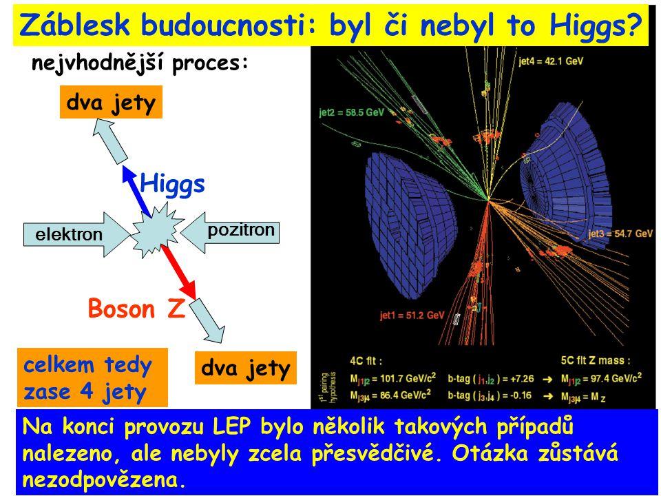 1.11.2007Malá skála20 Záblesk budoucnosti: byl či nebyl to Higgs.