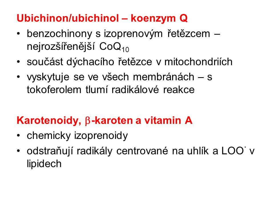 Ubichinon/ubichinol – koenzym Q benzochinony s izoprenovým řetězcem – nejrozšířenější CoQ 10 součást dýchacího řetězce v mitochondriích vyskytuje se v
