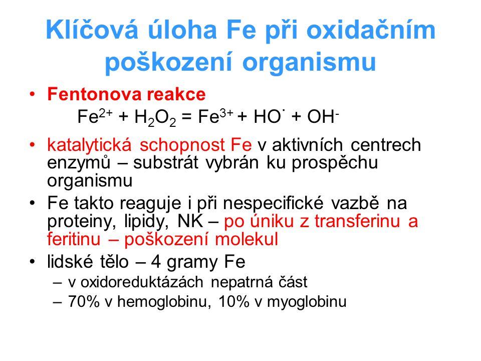 Klíčová úloha Fe při oxidačním poškození organismu Fentonova reakce Fe 2+ + H 2 O 2 = Fe 3+ + HO · + OH - katalytická schopnost Fe v aktivních centrec