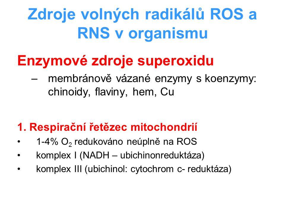 Zdroje volných radikálů ROS a RNS v organismu Enzymové zdroje superoxidu –membránově vázané enzymy s koenzymy: chinoidy, flaviny, hem, Cu 1. Respiračn