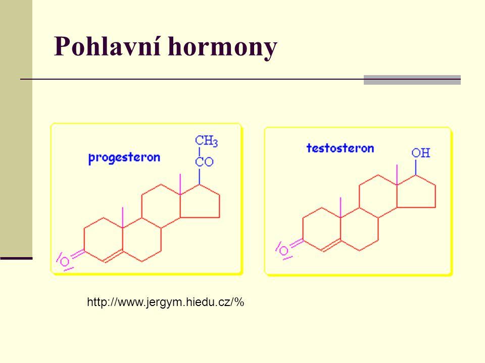 Pohlavní hormony http://www.jergym.hiedu.cz/%