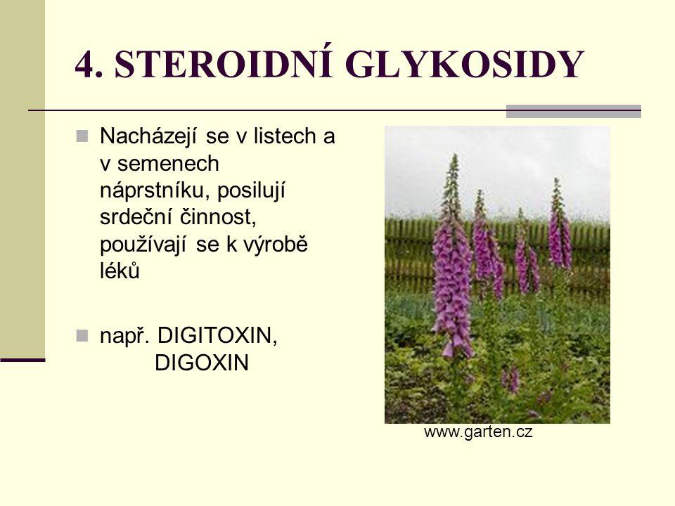 4. STEROIDNÍ GLYKOSIDY Nacházejí se v listech a v semenech náprstníku, posilují srdeční činnost, používají se k výrobě léků např. DIGITOXIN, DIGOXIN w