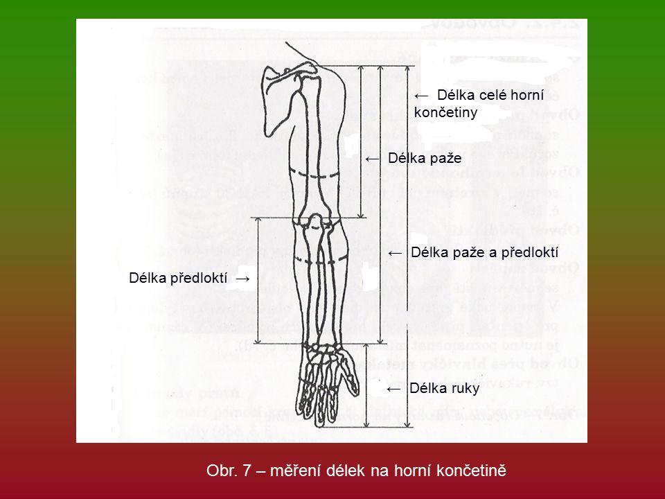← Délka celé horní končetiny ← Délka paže a předloktí ← Délka paže ← Délka ruky Délka předloktí → Obr.