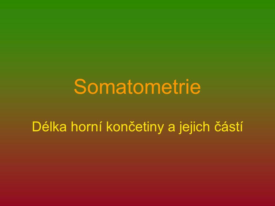 Somatometrie Délka horní končetiny a jejich částí