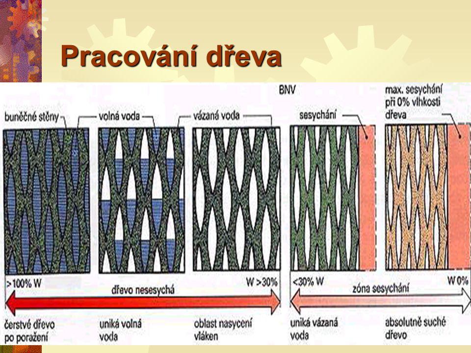 Pracování dřeva VVoda (vlhkost) ve dřevě se nachází v buněčných dutinách.