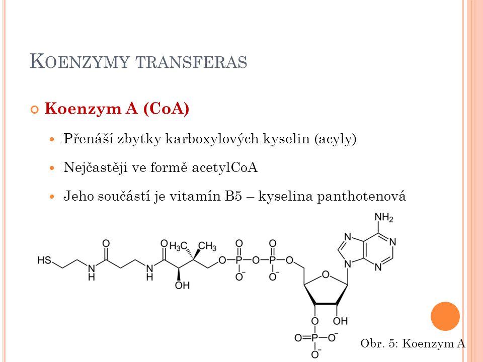 K OENZYMY TRANSFERAS Koenzym A (CoA) Přenáší zbytky karboxylových kyselin (acyly) Nejčastěji ve formě acetylCoA Jeho součástí je vitamín B5 – kyselina panthotenová Obr.