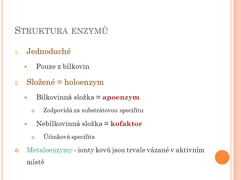 S TRUKTURA ENZYMŮ 1. Jednoduché Pouze z bílkovin 2. Složené = holoenzym Bílkovinná složka = apoenzym Zodpovídá za substrátovou specifitu Nebílkovinná