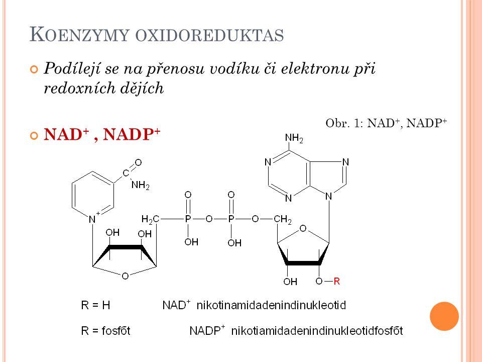 K OENZYMY OXIDOREDUKTAS Podílejí se na přenosu vodíku či elektronu při redoxních dějích NAD +, NADP + Obr. 1: NAD +, NADP +