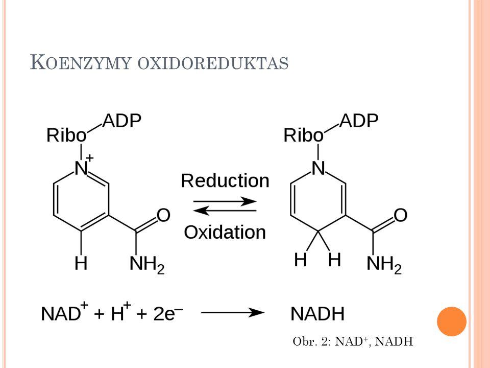 K OENZYMY OXIDOREDUKTAS FAD – flavinadenindinukleotid FMN – flavinmononukleotid Glutathion Ubichinon Obr.