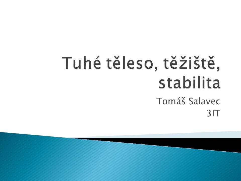 Tomáš Salavec 3IT