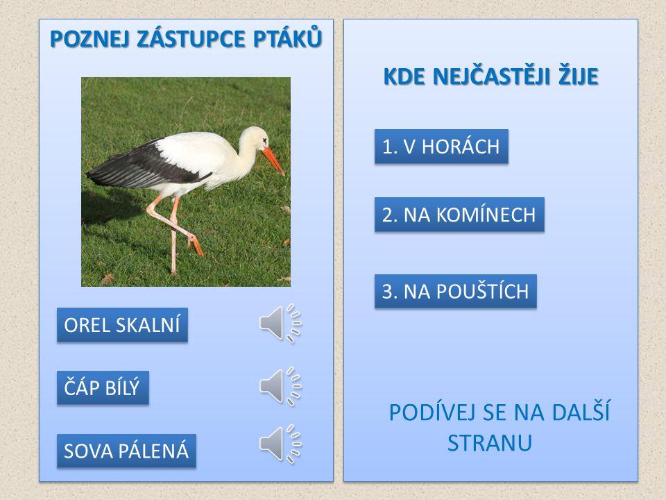 ZDROJE http://www.animalphotos.me/bird5-stork1.htm http://www.lesycr.cz/cs/turiste-a-pratele-prirody/foto-a-video-galerie/fauna.ep/463_369-cap-bily/ http://www.animalphoto.tk/swan-photos.html http://www.nabla.cz/obsah/biologie/zivocichove/ptaci/labut-velka.php http://cs.wikipedia.org/wiki/V%C3%BDr_velk%C3%BD http://www.photonature.cz/projekty/fotograficke-kurzy/89-extremni-fotograficky-kurz-na-snehu-update.html http://www.ifauna.cz/clanek/okrasne-ptactvo/k-zamysleni/4633/ http://www.priroda.cz/lexikon.php?detail=242 http://kikzvire.blog.cz/0703/hrabos-polni http://www.ireceptar.cz/zvirata/ptaci/ptaci-na-krmitku-i-sykora-konadra/ http://www.ireceptar.cz/res/data/081/009932.jpg http://www.ireceptar.cz/zvirata/ptaci/jak-nejlepe-krmit-ptacky-na- krmitku/#utm_source=self&utm_medium=clanek&utm_campaign=ptaci-na-krmitku-i-sykora-konadra http://www.ireceptar.cz/zvirata/ptaci/jak-nejlepe-krmit-ptacky-na- krmitku/#utm_source=self&utm_medium=clanek&utm_campaign=ptaci-na-krmitku-i-sykora-konadra http://faunacr.blog.cz/0901/obrazky-sykora-konadra http://www.garten.cz/forum/f1/cz/12139/ http://hobby.idnes.cz/prilisne-krmeni-muze-ptackum-i-skodit-nechce-se-jim-zpivat-a-zustavaji-na-ocet-1xt-/hobby- mazlicci.aspx?c=A110103_111514_hobby-mazlicci_bma http://hobby.idnes.cz/prilisne-krmeni-muze-ptackum-i-skodit-nechce-se-jim-zpivat-a-zustavaji-na-ocet-1xt-/hobby- mazlicci.aspx?c=A110103_111514_hobby-mazlicci_bma http://cs.wikipedia.org/wiki/Datel_%C4%8Dern%C3%BD http://www.wildlifefotoforum.cz/viewtopic.php?f=64&t=578&start=25 http://www.artenschutz-online.de/artenschutz_im_urlaub/bildnachweis_artenschutz.php?seite=19 http://view.stern.de/de/original/Winter-Kiefer-Schwarzspecht-Lauter-geht-es-nicht-932037.html