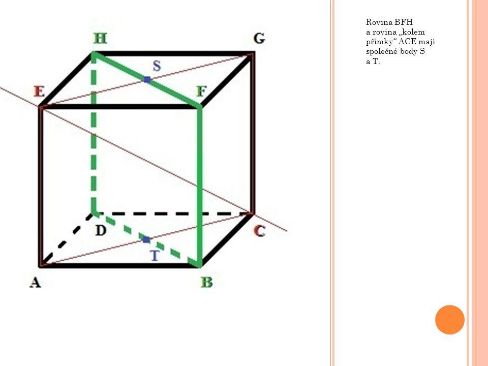 """Rovina BFH a rovina """"kolem přímky"""" ACE mají společné body S a T."""
