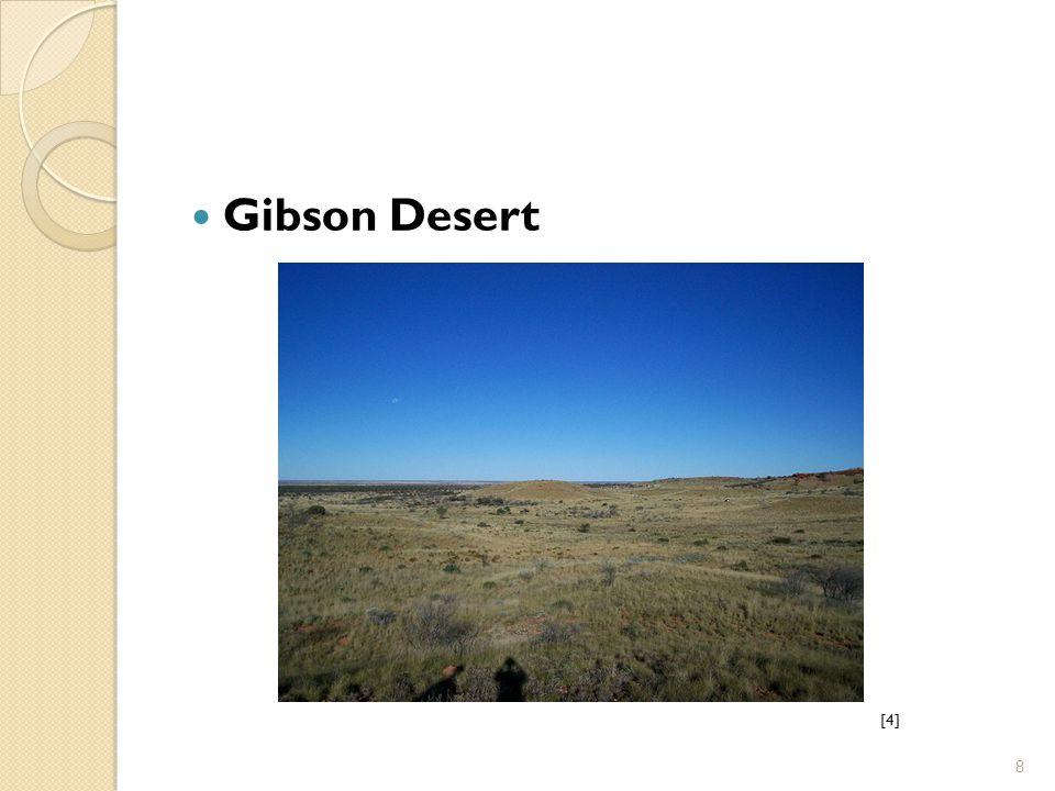 Gibson Desert [4] 8