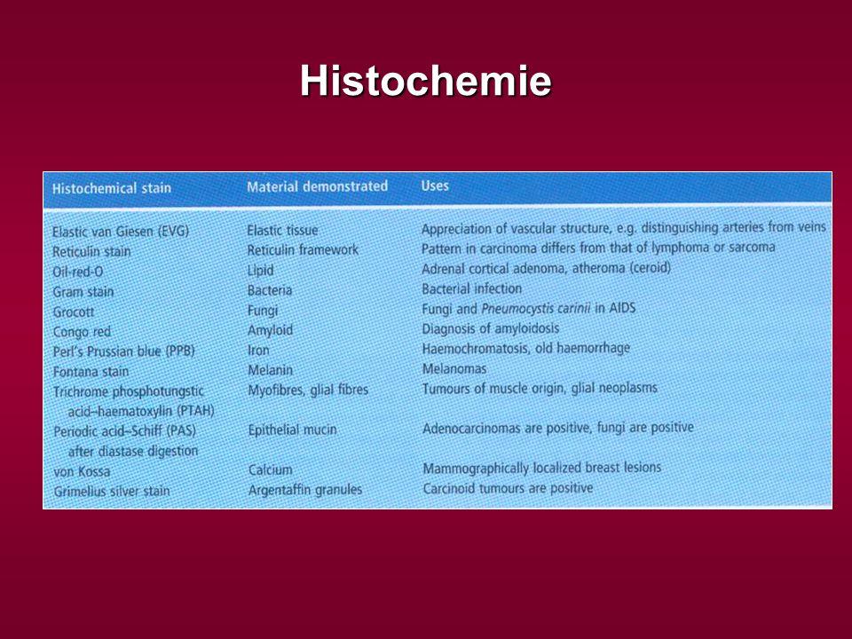 Histochemie