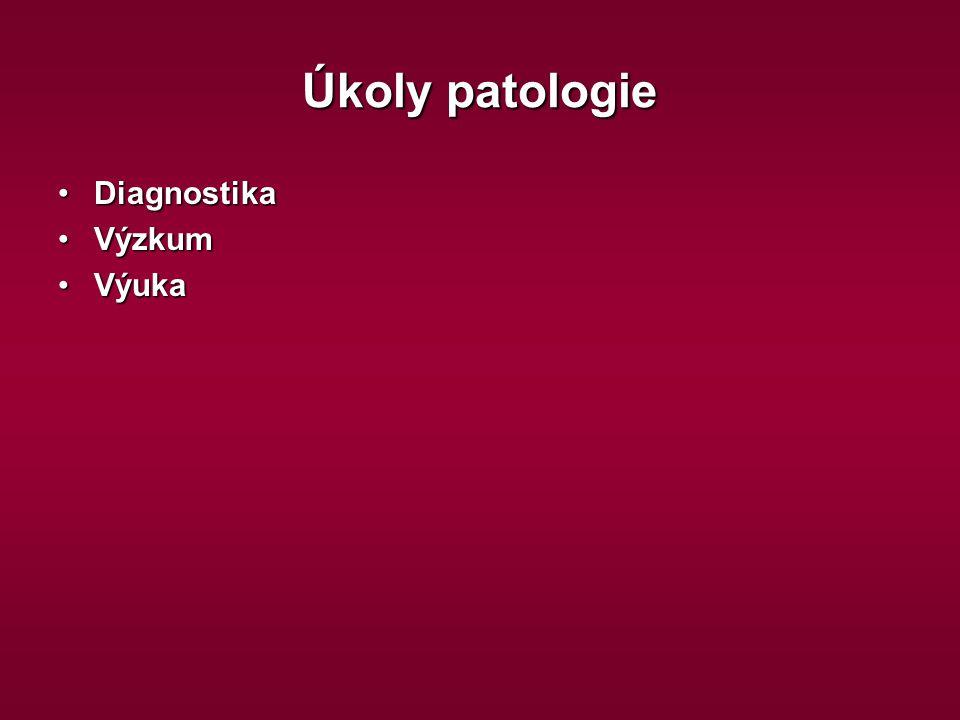 Indukce apoptózy RadiaceRadiace HypertermieHypertermie CytostatikaCytostatika CytokinyCytokiny Interakce T lymfocytů s cílovými buňkamiInterakce T lymfocytů s cílovými buňkami Hypoxie, kyslíkové radikály, atd.Hypoxie, kyslíkové radikály, atd.