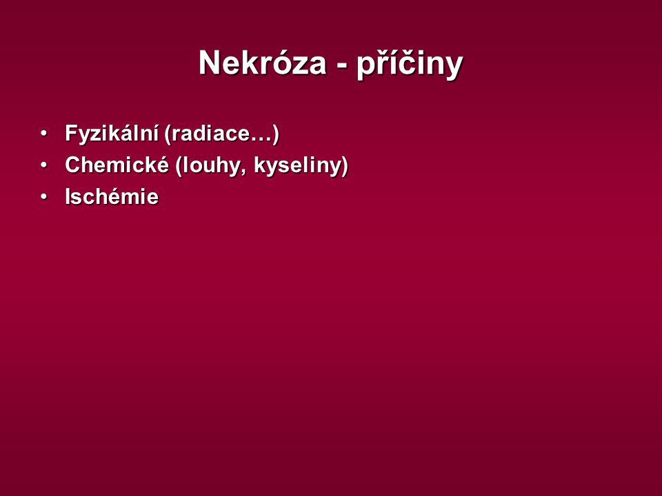 Nekróza - příčiny Fyzikální (radiace…)Fyzikální (radiace…) Chemické (louhy, kyseliny)Chemické (louhy, kyseliny) IschémieIschémie
