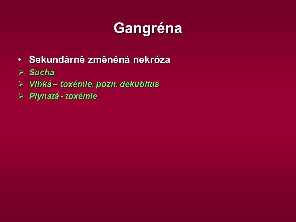 Gangréna Sekundárně změněná nekrózaSekundárně změněná nekróza  Suchá  Vlhká – toxémie, pozn. dekubitus  Plynatá - toxémie