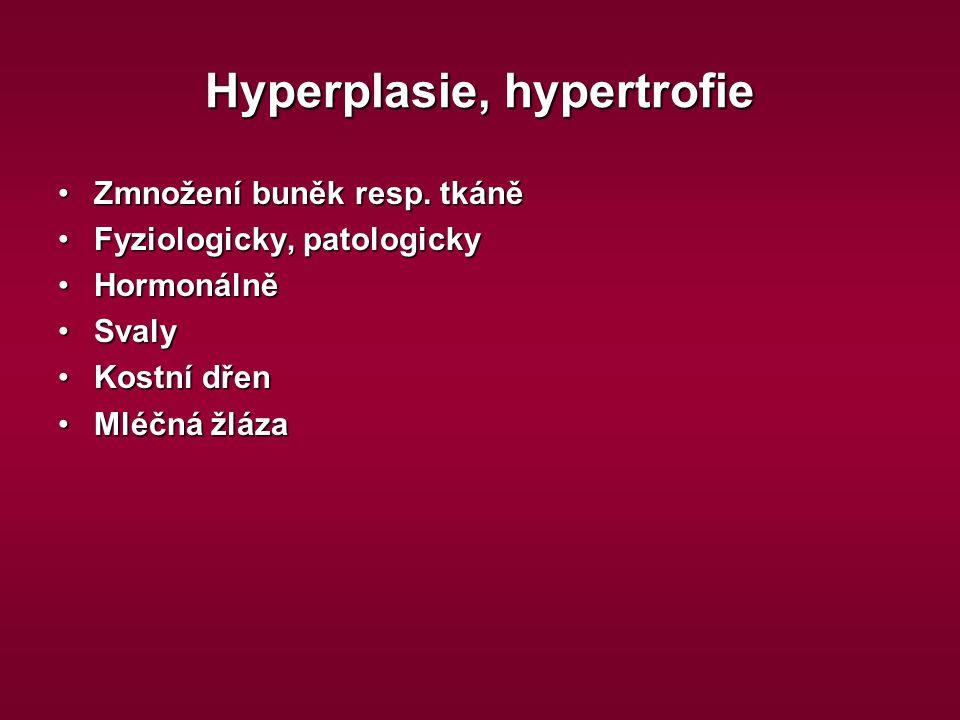 Hyperplasie, hypertrofie Zmnožení buněk resp. tkáněZmnožení buněk resp. tkáně Fyziologicky, patologickyFyziologicky, patologicky HormonálněHormonálně