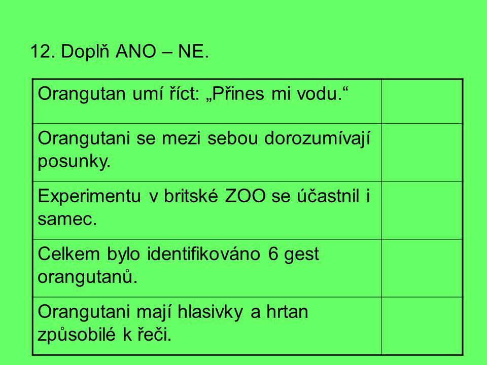 12. Doplň ANO – NE.