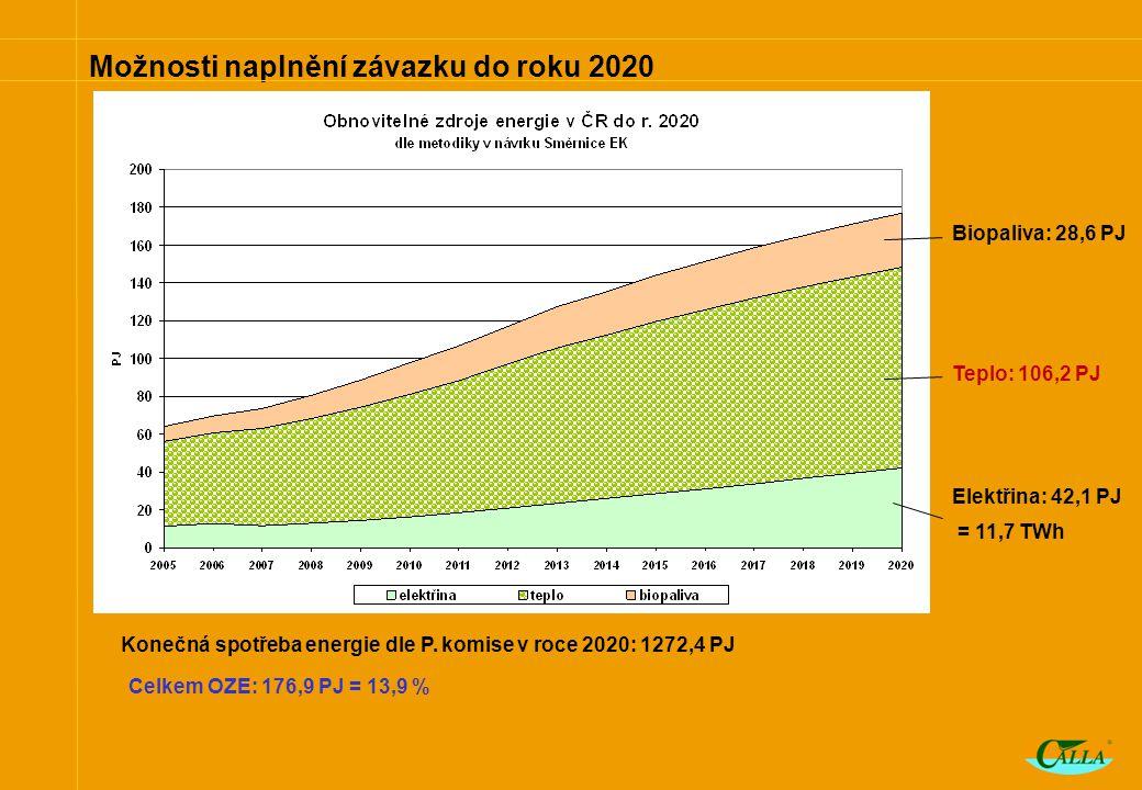 Možnosti naplnění závazku do roku 2020 Biopaliva: 28,6 PJ Teplo: 106,2 PJ Elektřina: 42,1 PJ = 11,7 TWh Konečná spotřeba energie dle P.