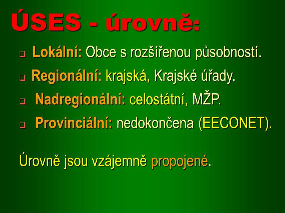  Lokální: Obce s rozšířenou působností. Regionální: krajská, Krajské úřady.