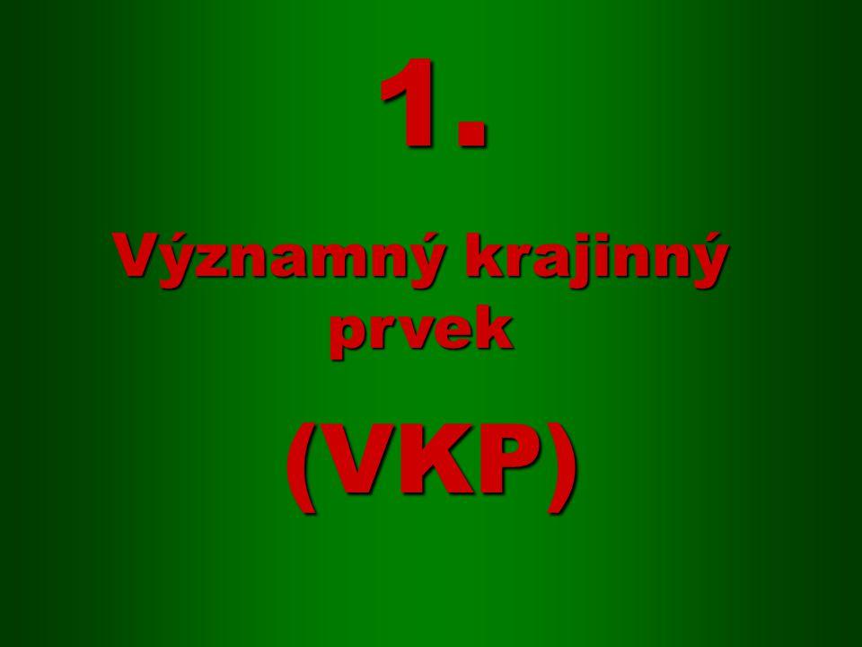 (VKP) Významný krajinný prvek 1.