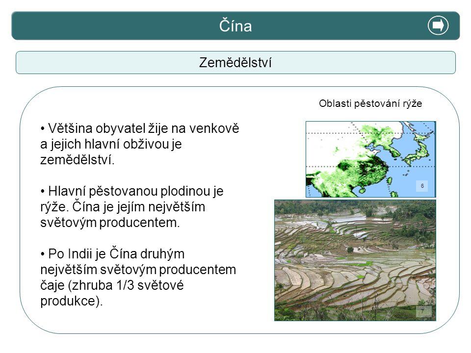 X. Zajímavosti Čína Zemědělství Většina obyvatel žije na venkově a jejich hlavní obživou je zemědělství. Hlavní pěstovanou plodinou je rýže. Čína je j