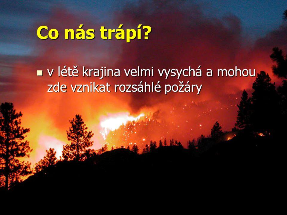 Co nás trápí? v létě krajina velmi vysychá a mohou zde vznikat rozsáhlé požáry v létě krajina velmi vysychá a mohou zde vznikat rozsáhlé požáry